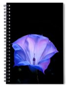 Mauve Blue Black Angels Trumpet Spiral Notebook