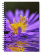 Mauve Softness And Reflections Spiral Notebook