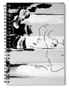 Max Stars And Stipes In Black And White Spiral Notebook