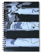 Max Stars And Stripes In Cyan Spiral Notebook