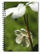 May Apple Flower Spiral Notebook