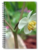 May Apple Spiral Notebook