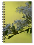 May's Soft Whispers Spiral Notebook