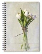 Mazzo Spiral Notebook
