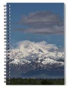 Mckinley South Veiw Spiral Notebook