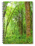 Mclane Wetlands Nature Preserve Spiral Notebook