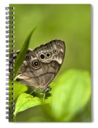 Meadow Butterfly Spiral Notebook
