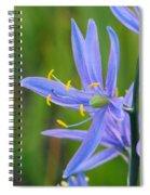 Meadow Camas Spiral Notebook