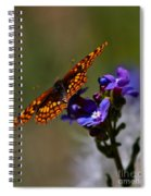 Meadow Color Spiral Notebook