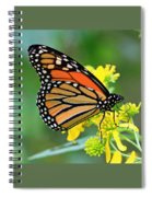 Meadow Monarch Spiral Notebook