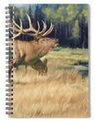 Meadow Music Spiral Notebook