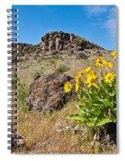 Meadow Of Arrowleaf Balsamroot Spiral Notebook