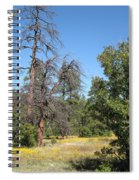 Meadow Over Oak Creek Canyon  Spiral Notebook