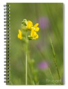 Meadow Vetchling Spiral Notebook