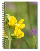 Meadow Vetchling Wild Flower Spiral Notebook
