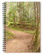 Meandering Along Cheakamus Lake Spiral Notebook