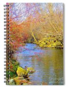 Meandering Stream  Spiral Notebook