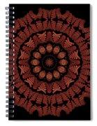 Medicine Wheel Dragonspur K12-5 Spiral Notebook