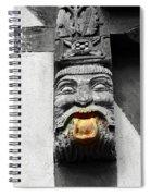 Medieval Statue Spiral Notebook