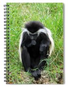 Meditating Monkey Spiral Notebook