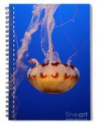 Medusa Jellyfish  Spiral Notebook