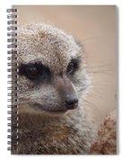 Meerkat 7 Spiral Notebook