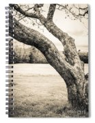 Meet Me Under The Old Apple Tree Spiral Notebook