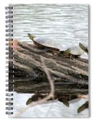 Meeting On The Log Spiral Notebook
