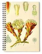 Melera Spiral Notebook