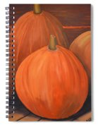Melons Spiral Notebook