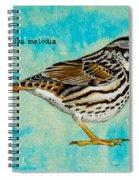 Melospiza Melodia Spiral Notebook