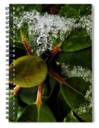Melting Crystals Spiral Notebook