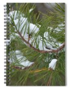 Melting Snow In The Pines Spiral Notebook