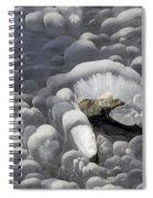 Mendenhall Lake Ice Abstract Spiral Notebook