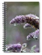 Mentha Spiral Notebook