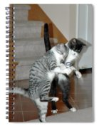 Meow Vows Spiral Notebook