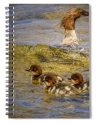 Merganser Lake Tahoe Spiral Notebook
