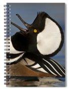 Merganser Showing Off Spiral Notebook