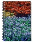 Merging Colors Spiral Notebook