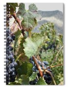 Merlot Ready Spiral Notebook