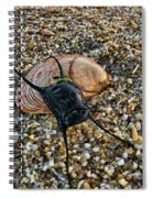 Mermaids Purse Spiral Notebook