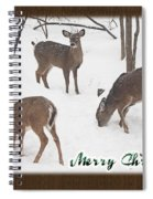 Merry Christmas Card - Whitetail Deer In Snow Spiral Notebook