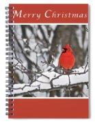 Merry Christmas Male Cardinal Spiral Notebook