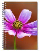 Merry Cosmos Floral Spiral Notebook