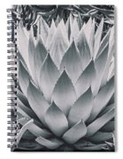 Mescal Agave Spiral Notebook