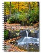 Mesmerizing Spiral Notebook