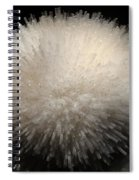 Mesolite And Fluoroapophyllite Spiral Notebook