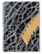 Mesquite Leaves Spiral Notebook
