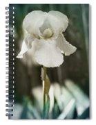 Messenger Of Love Spiral Notebook