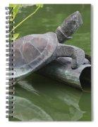 Metal Turtle Spiral Notebook